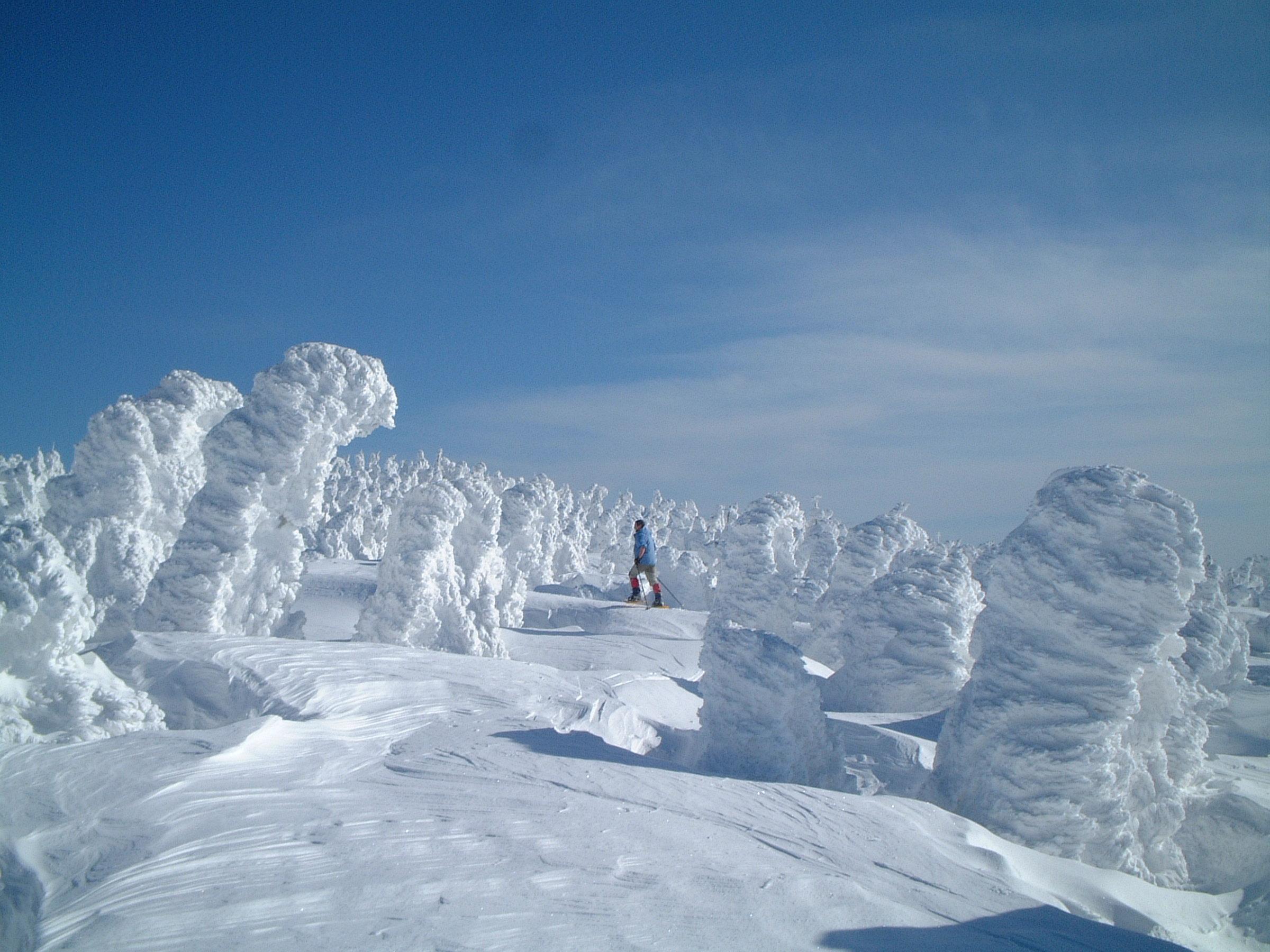 Snow monster (Juhyou) on Zao-san